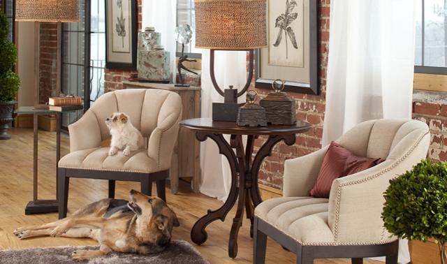 Amerikai lakberendezés kutyák a fotelben