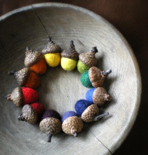 Színes tölgyfa makk termés dekoráció