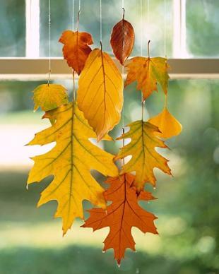 Színes préselt falevelek őszi lakásdekoráció