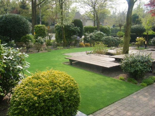 Műtű, holland pázsit kertbe