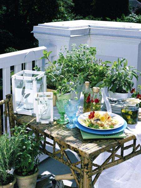 Fűszernövények a teraszon