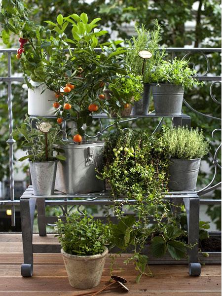 Emeletes fűszernövény tartó