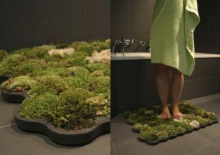 Élő mohaszőnyeg a fürdőszobában