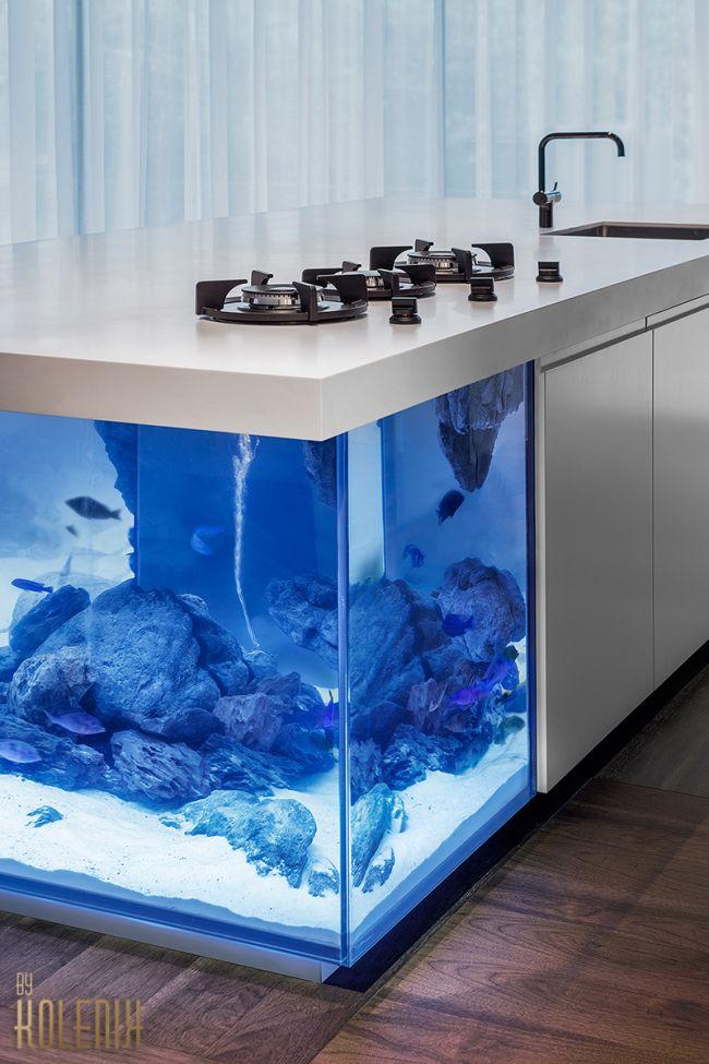 Akvárium a konyhaszigetben Robert Kolenik Ocean konyha