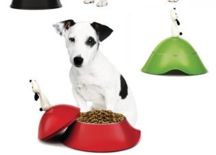 Karácsonyi ajándékötletek állatbarátoknak