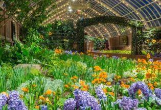 Virtuális séta a világ legzöldebb botanikus kertjében
