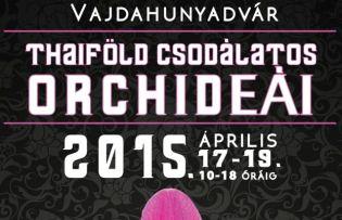 Sziam virágzó kincsei - Tavaszi orchidea kiállítás a Vajdahunyadvárban