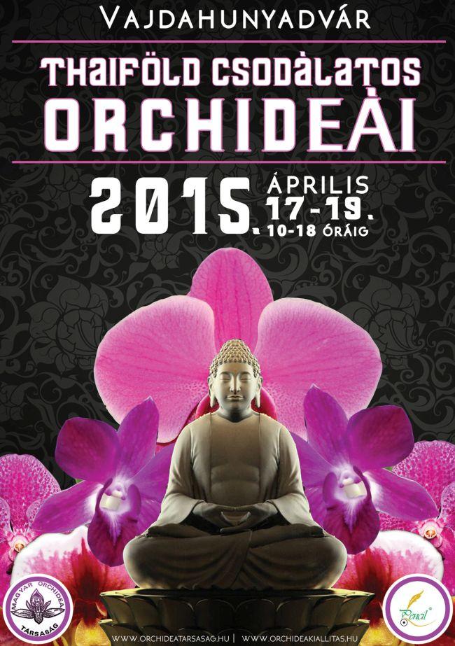 Orchidea tavaszi kiállítás a Vajdahunyadvárban