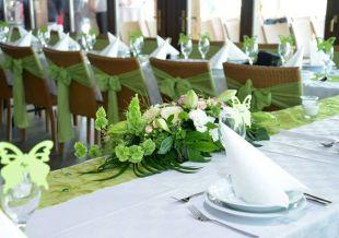 Zöld esküvő dekoráció élő növényekkel
