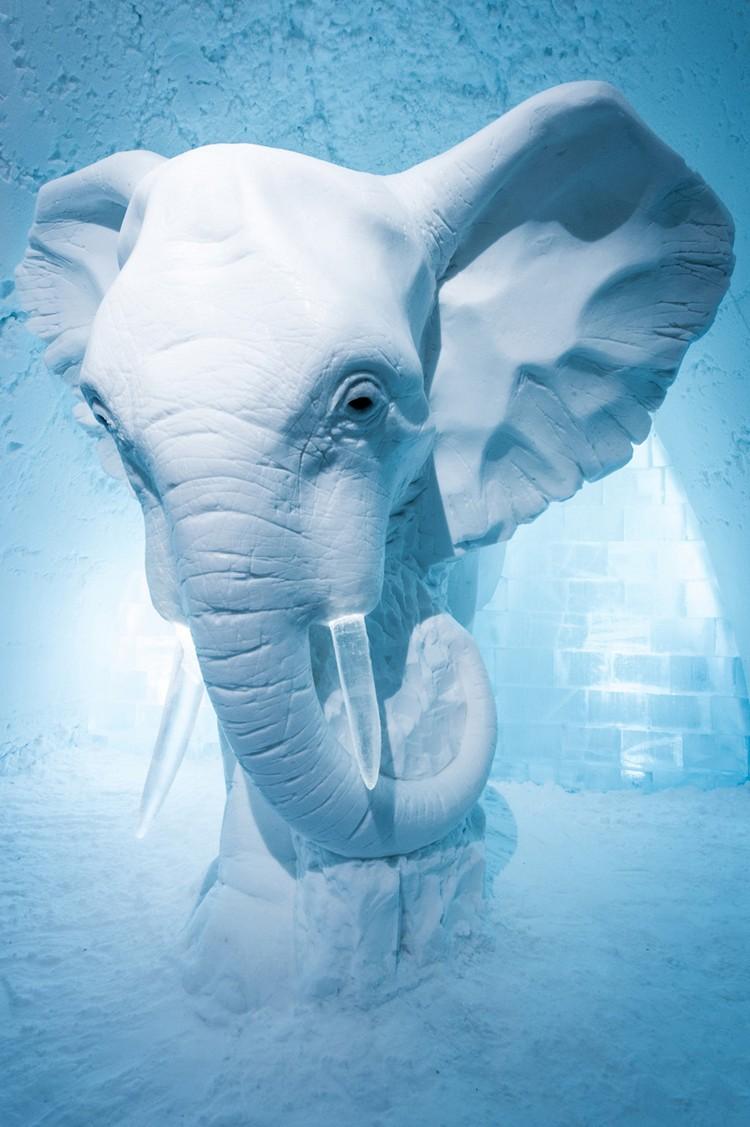 Elefánt szobor jégből