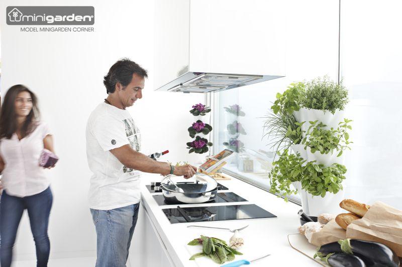 Minigarden Corner sarokba helyezhető növénytartó
