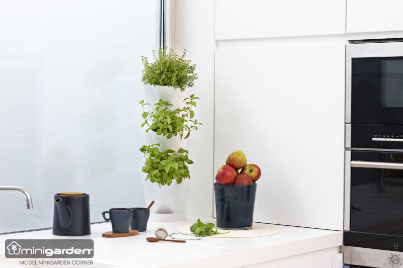 Minigarden Corner sarokba helyezhető növénytartó emeletes
