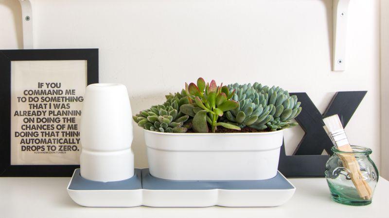 Minigarden Basic önöntöző rendszerrel