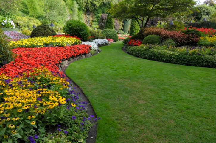 Alacsony építésű virágoskert
