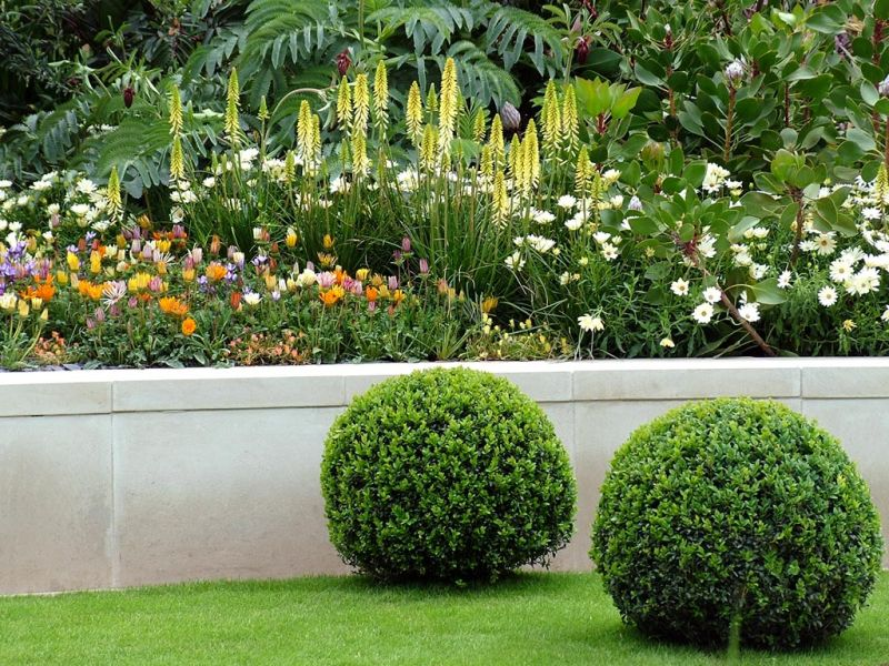 Többszintes kert alacsony bokor nyírt