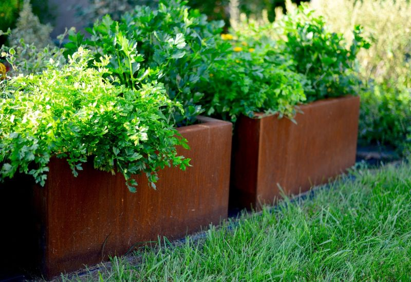 Corten acél növénytartó és virágtartó
