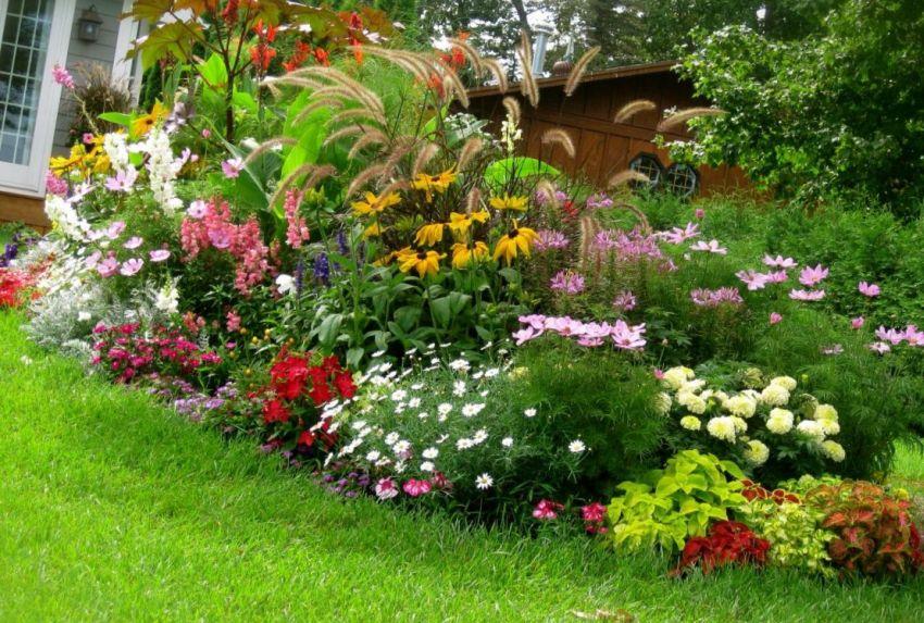 Virágültetés a kiskertünkbe