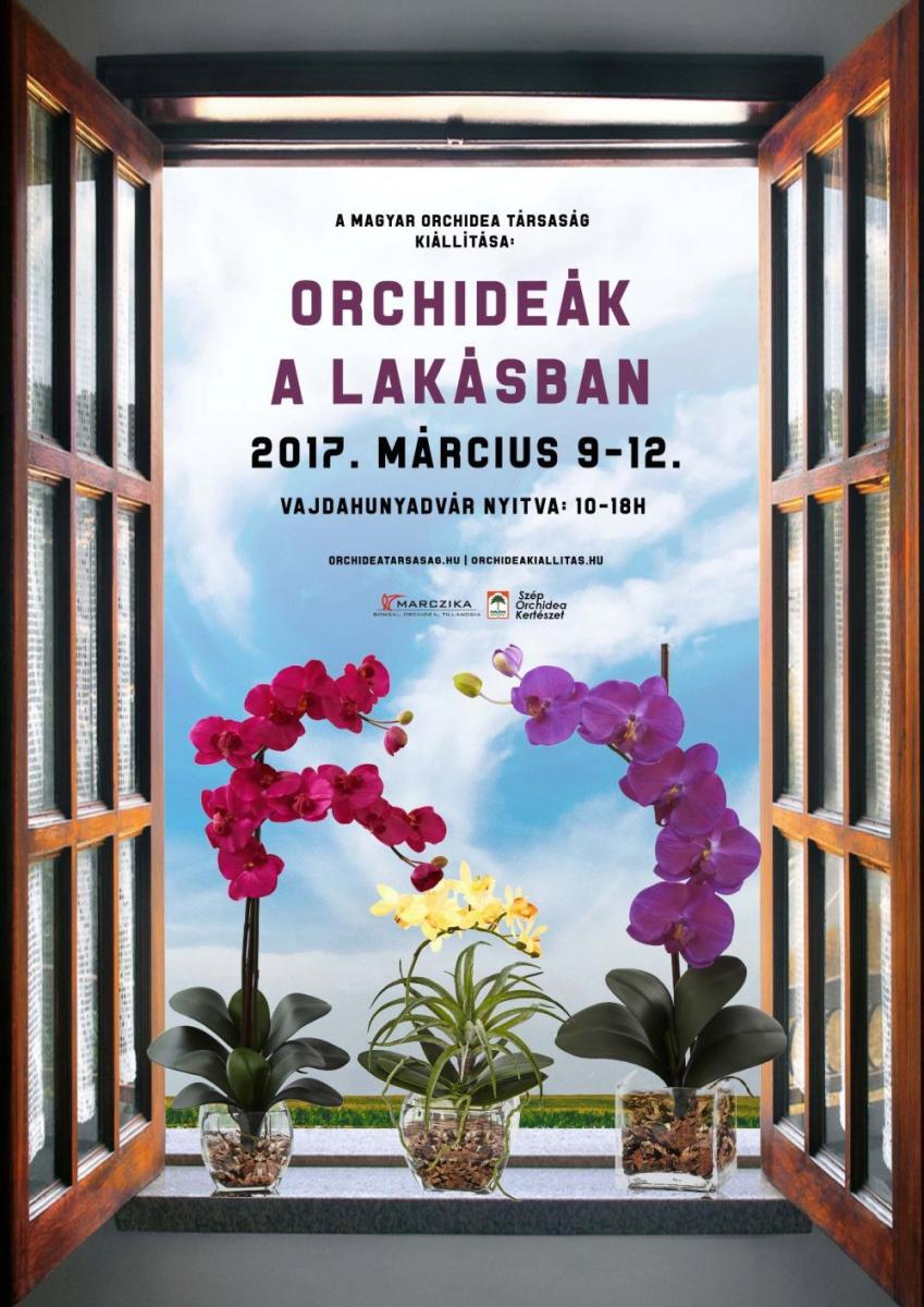Orhidea kiállítás plakát 2017 tavasz