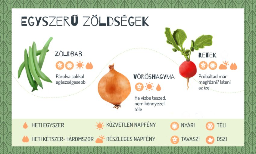 Egyszerű zöldség erkélyre