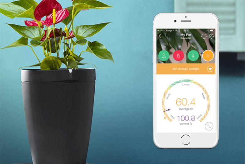 Okostelefonról növényöntözés