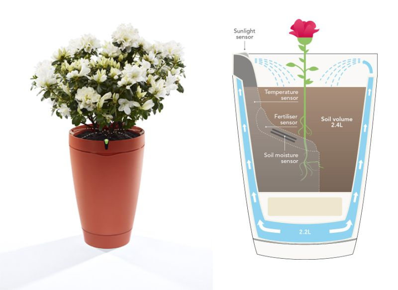 Önöntöző virágcserép