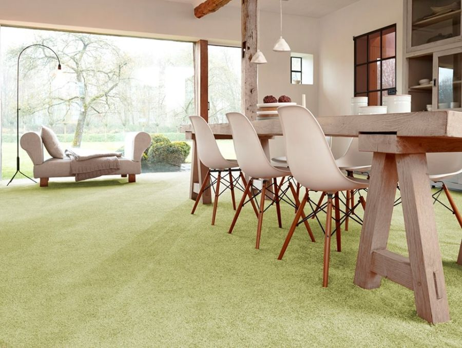 Leguan padlószőnyeg tisztítható étkezőbe