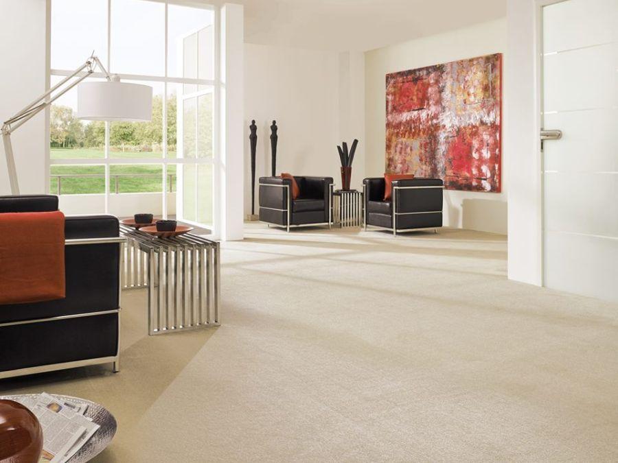Leguan padlószőnyeg modern nappaliba