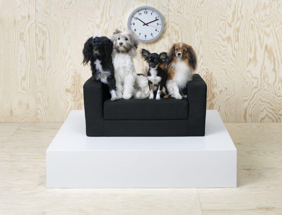 Ikea kanapé kutyáknak