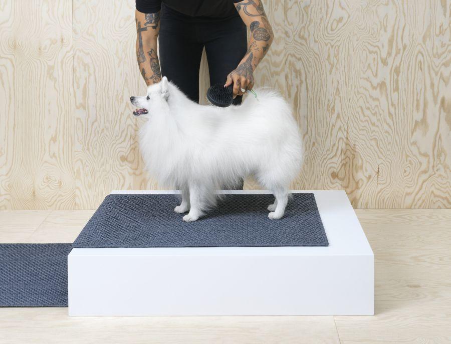 Ikea szőrkefe kutyákhoz