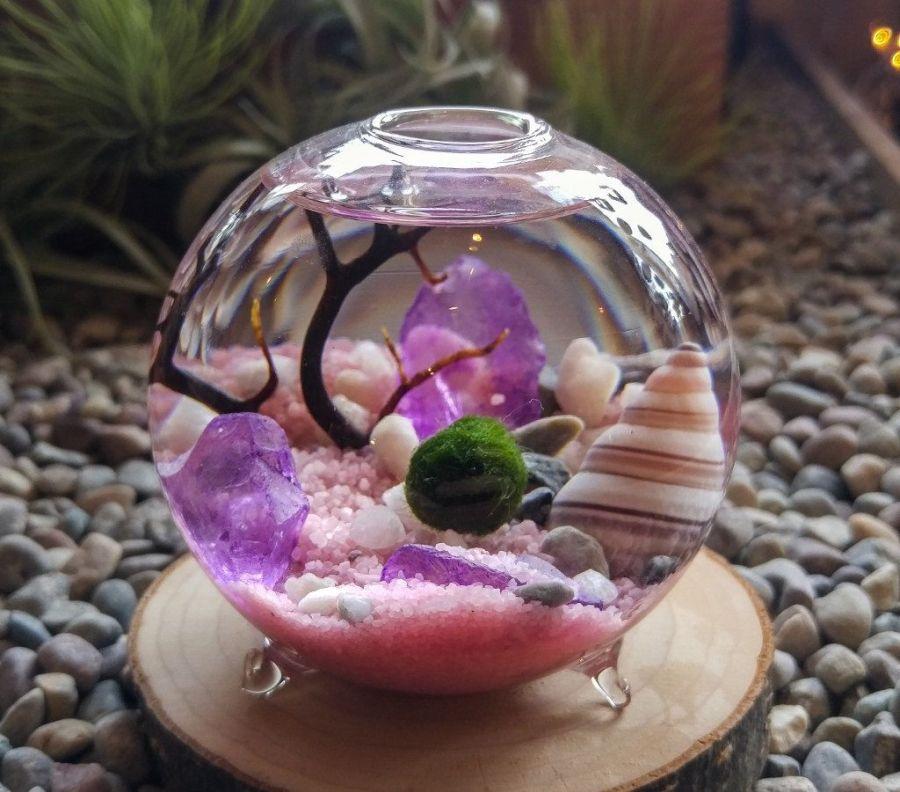 Gömbmoha kagylókkal és kristályokkal