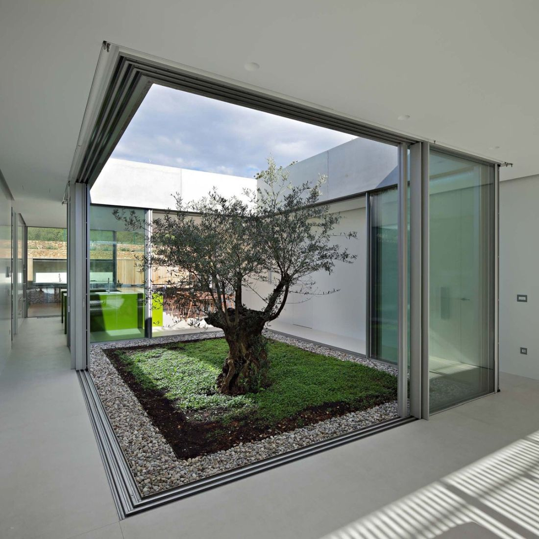 A fa köré épített ház - Ez lett a belső kert dísze