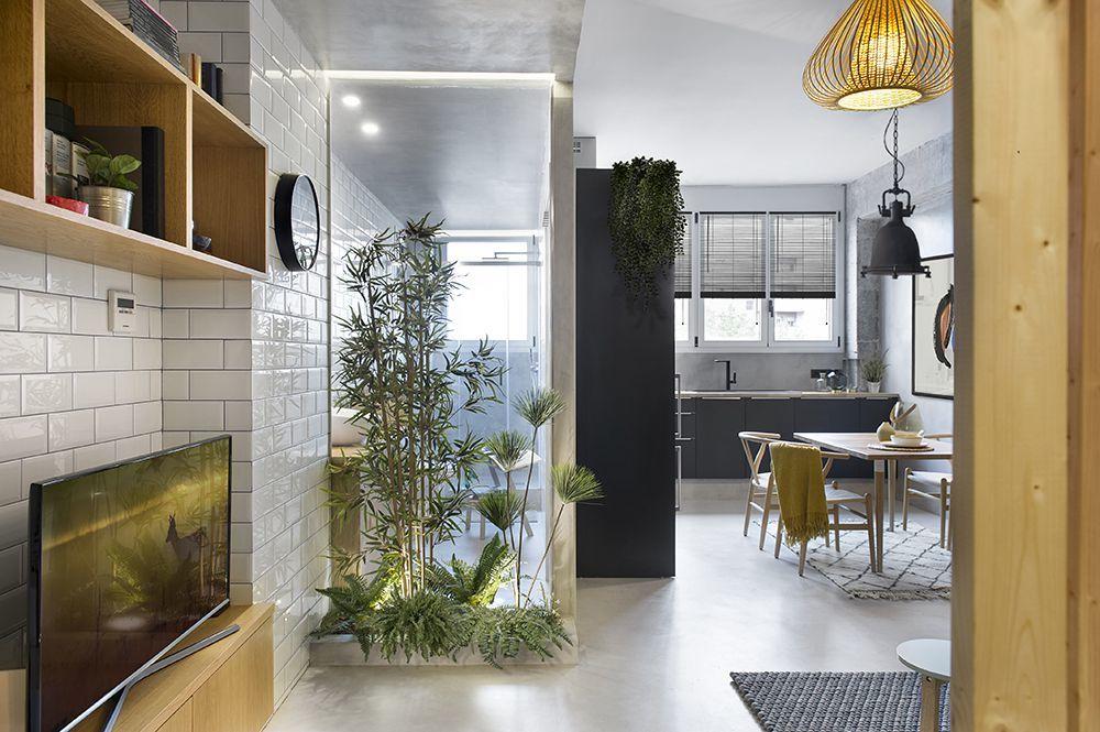 Bambusz takarja a fürdőszoba üvegfalát