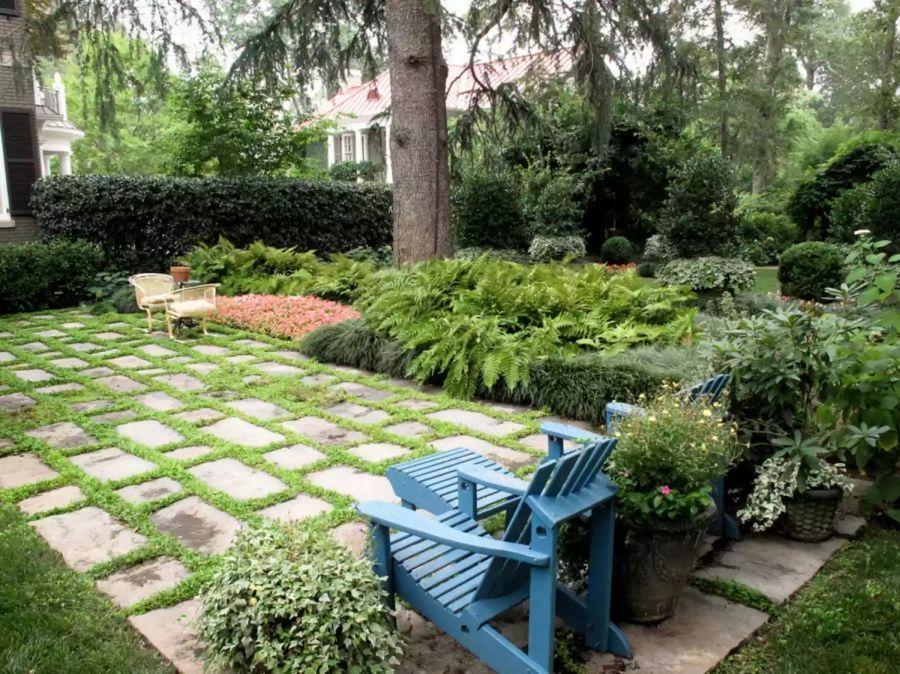 Páfrányok és hátsó kerti pihenő
