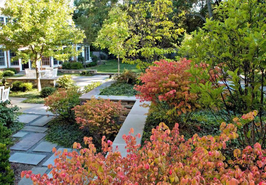 Kert őszi színekben