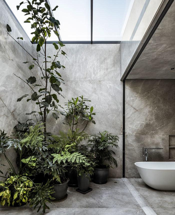 Növénydekoráció a fürdőben