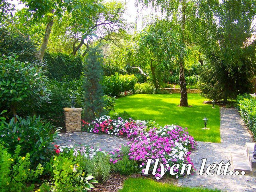 Árnyas kert - Kertelünk Kft.
